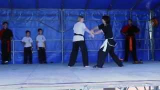 preview picture of video 'Demonstration du Shaolin Kung Fu Val d'Yvette au Forum des Associations de Bures Sur Yvette'