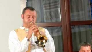 preview picture of video 'Vlado Kumpan und sein Orchester in Hagenbrunn 2012 Video 2'