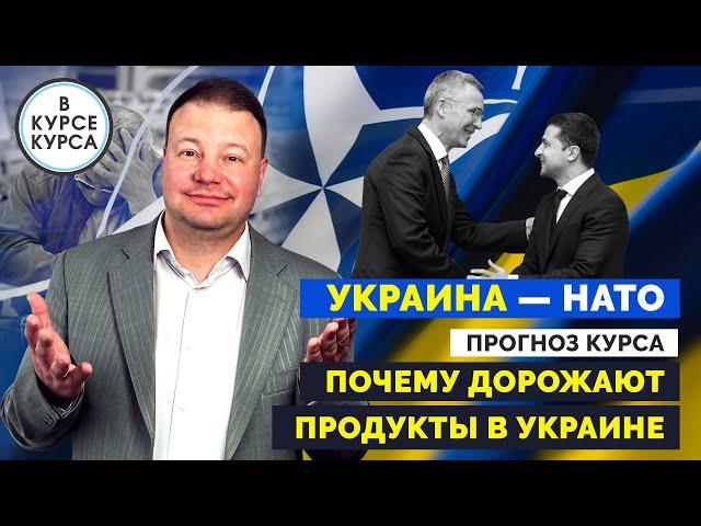 На сколько вырастут цены на продукты в Украине. Украина — НАТО 2021. Прогноз курса.
