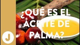 ¿Por qué no tomar aceite de palma? -JUAN LLORCA