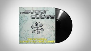 The Sugarcubes - Speed Is The Key