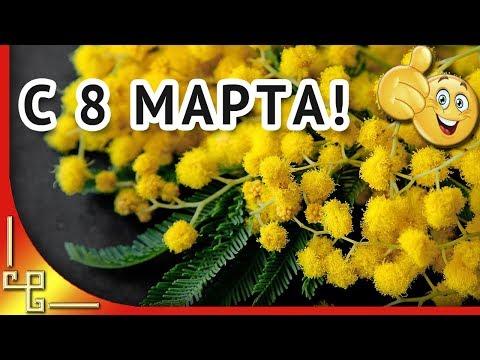 Песня цветы мы желаем счастья вам видео