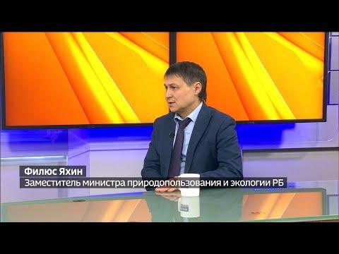 Интервью заместителя министра природопользования и экологии РБ Ильдуса Яхина на канале ГТРК-Башкортостан