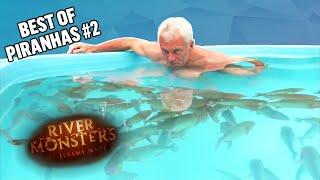 Video Best of Pirahnas: Part 2 - River Monsters MP3, 3GP, MP4, WEBM, AVI, FLV Agustus 2019