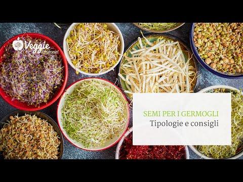 Migliori peptidi di collagene per la perdita di peso