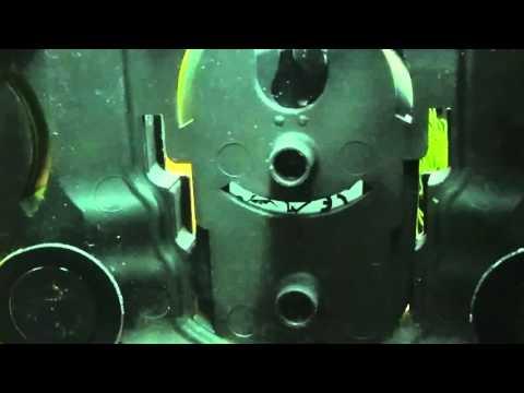 Lezione di un ogulov su parassiti - Helminths di video di operazione
