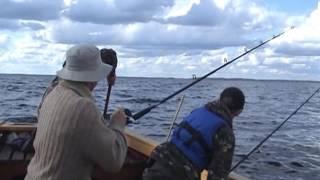 Отдых и рыбалка на сямозере