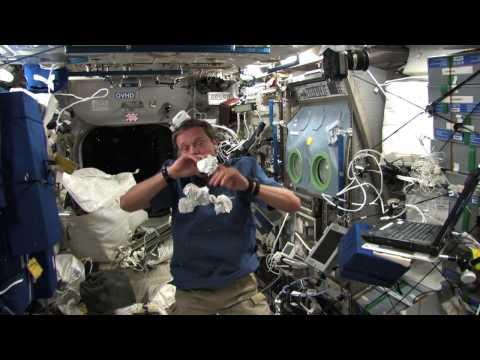 Vad gör en astronaut på sin lediga tid?