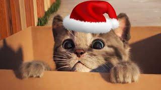 ПРИКЛЮЧЕНИЕ МАЛЕНЬКОГО КОТЕНКА мультфильм про котят для малышей Новый мультик для детей #ММ