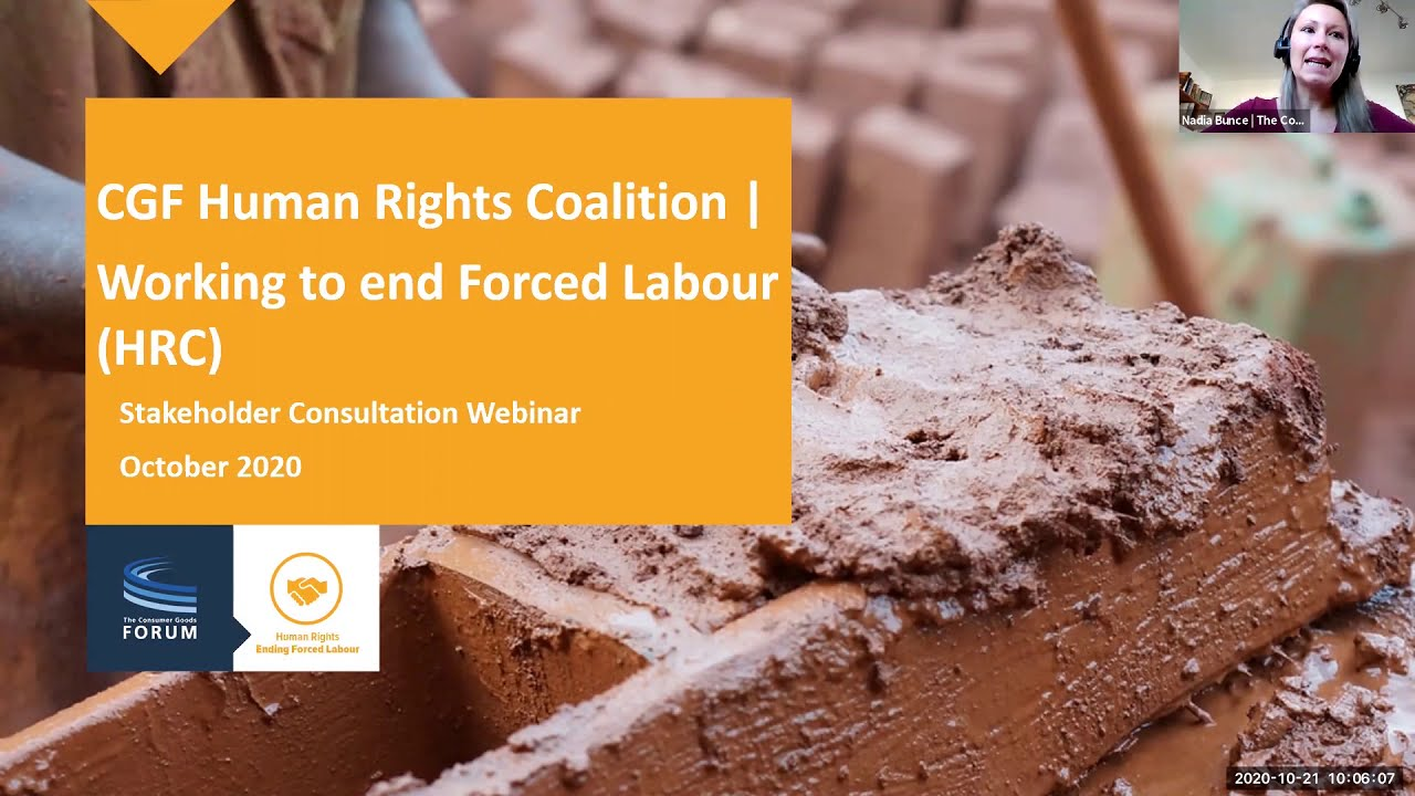 Human Rights Coalition — Working to End Forced Labour: Stakeholder Consultation Webinar