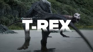 Exclusive Video of Tyrannosaurus Rex the KILLER!
