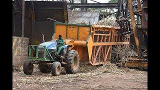 Western Kenya residents feel the pain of Mumias Sugar Company