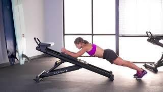 Plank (Basic)