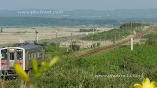 釧網線の動画素材, 4K写真素材