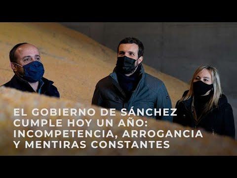 El Gobierno de Sánchez cumple un año: un año de incompetencia, arrogancia y mentiras constantes