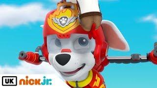Paw Patrol | Pups Save a Plane | Nick Jr. UK