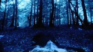 Then Jerico | Darkest Hour