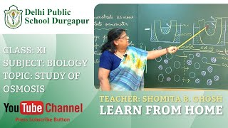 CLASS XI   TOPIC: STUDY OF OSMOSIS   BIOLOGY   LAB   DPS DURGAPUR