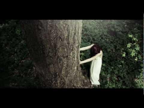 GROOMBRIDGE - In The Woods