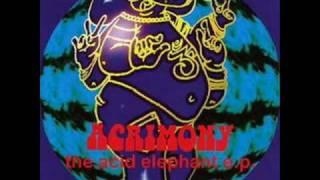 The bud song - Acrimony