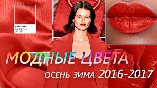 МОДНЫЕ ЦВЕТА Осень - Зима 2016 - 2017