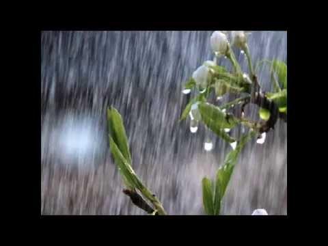 Música Chove de Saudade