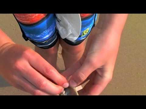 Isang tablet mula sa mga worm na Komorowski bata