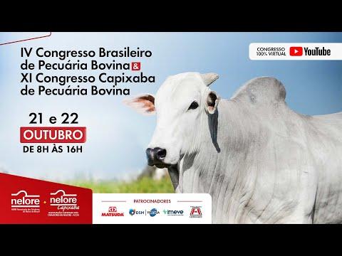 Dia 1- 4º Congresso Brasileiro de Pecuária Bovina – 11º Congresso Capixaba de Pecuária Bovina