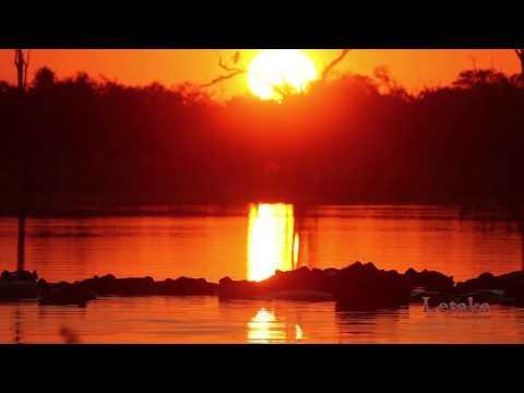 An Adventure with Letaka Safaris