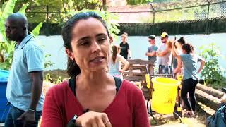 Dois mil canudos compostáveis viram adubo em Santos