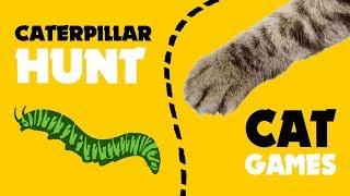BEST cat games ★ CATERPILLAR HUNT on screen