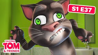 Talking Tom and Friends - The Famous Monster (Season 1 Episode 37)