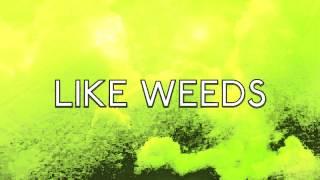 MARINA AND THE DIAMONDS   WEEDS (LYRICS)