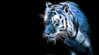 DJ Dance Music - Dance To The Music - MP3 Download