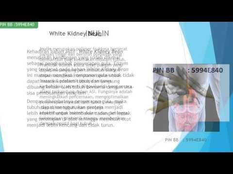 mp4 Diet Rendah Garam Pdf, download Diet Rendah Garam Pdf video klip Diet Rendah Garam Pdf