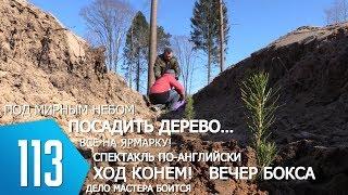 ТВой Островец - ТВОИ НОВОСТИ [выпуск 113]