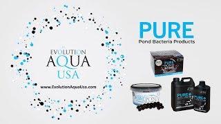 Evolution AQUA USA: Pure Pond Bacteria