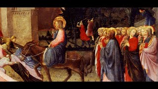 'diretta Santa Messa Domenica delle Palme' episoode image