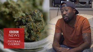 Легалайз в Канаде: что будет с осужденными ранее за хранение марихуаны?