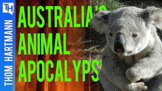 Are Australia's Apocalyptic Fires A Warning To The World? (w/ David Ritter)