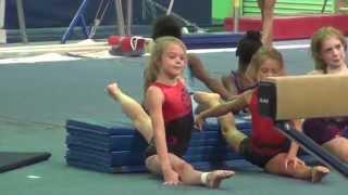 Whitney - USA Gymnastics TOPS Training 2014