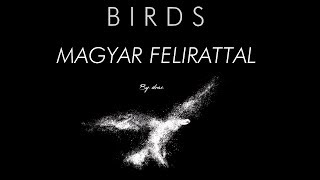 Imagine Dragons Ft. Elisa   Birds Magyar Felirattal