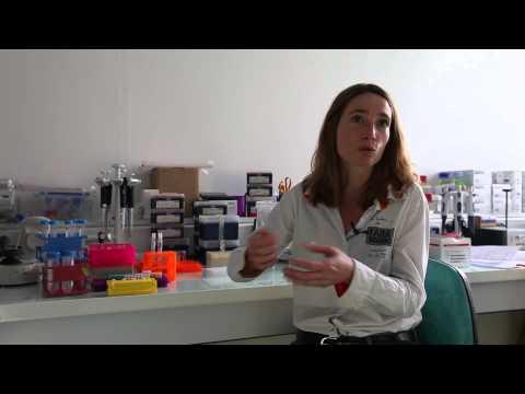 Les traitements du psoriasis à voroneje