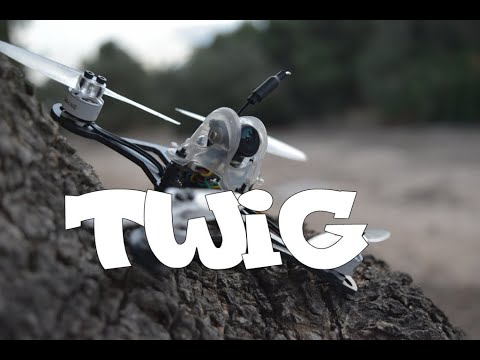 Eachine Twig: Test & Review Toothpick