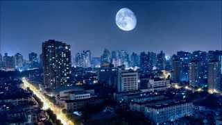 许美静: 城里的月光