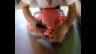 preview picture of video 'Decorazione con la pasta di zucchero'