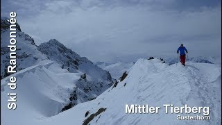 Ski de randonnée - Sustenhorn - Mittler Tierberg 3309 m