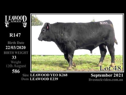 LEAWOOD YEO R147