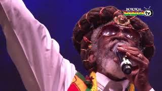 BUNNY WAILER sings Rasta Man Chant & Rasta Man live @Main Stage 2015