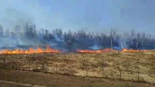 Под Тулой загорелось поле